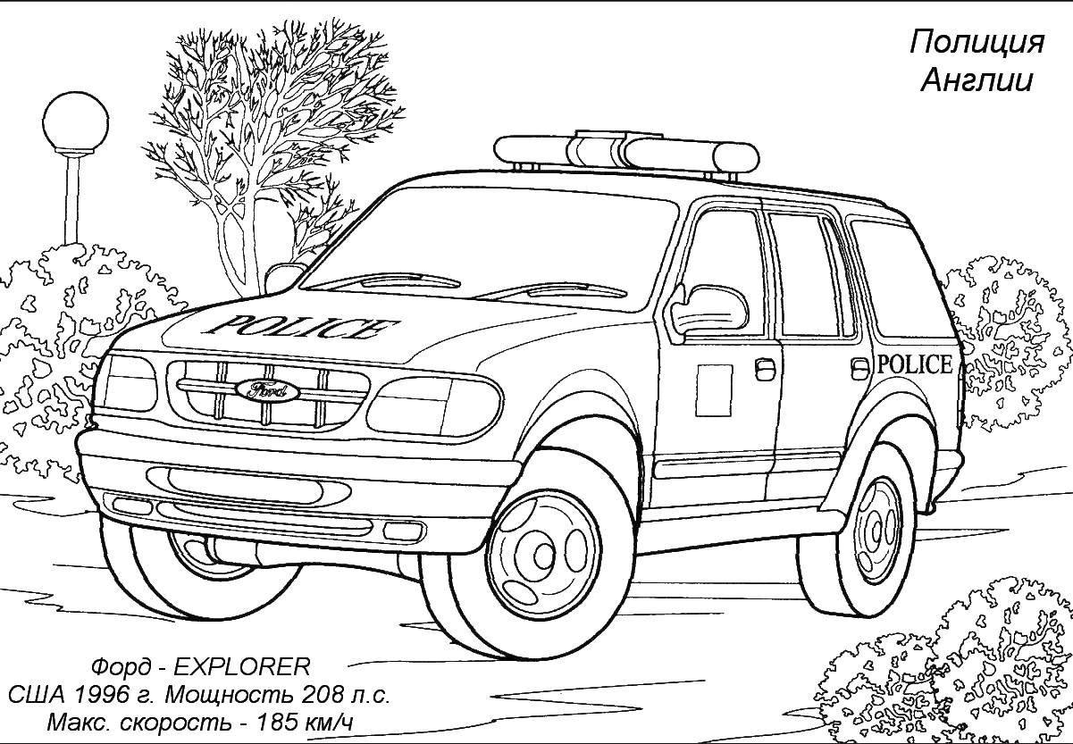 Раскраска транспорт Скачать примеры, картинка, математика, тюлень.  Распечатать ,математические раскраски,