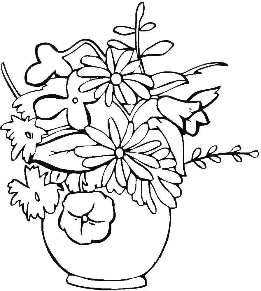 Раскраска Разные раскраски Скачать ,Цветы,.  Распечатать