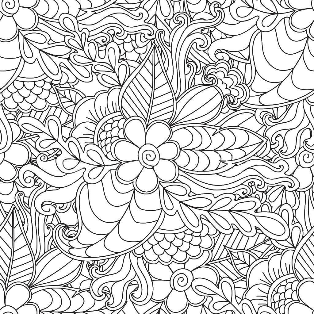 Раскраска  растение Скачать раскраски.  Распечатать ,загадки раскраски,