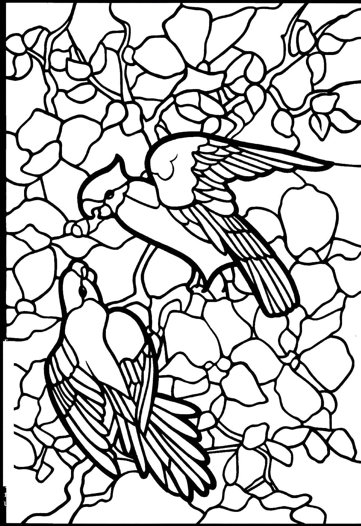 Раскраска Детское творчество Скачать ,витражи, дерево, цветы, птицы,.  Распечатать