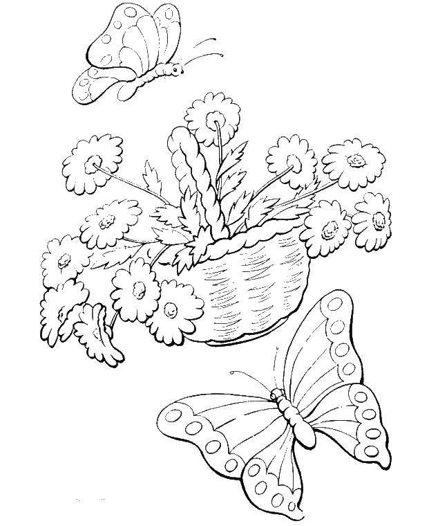 Раскраска цветы Скачать рамка.  Распечатать ,винтажные рамки для текста,