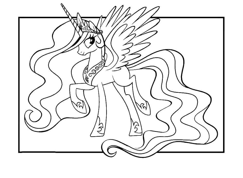 Раскраска Принцесса селестия Скачать пони, единорог.  Распечатать ,мультики,