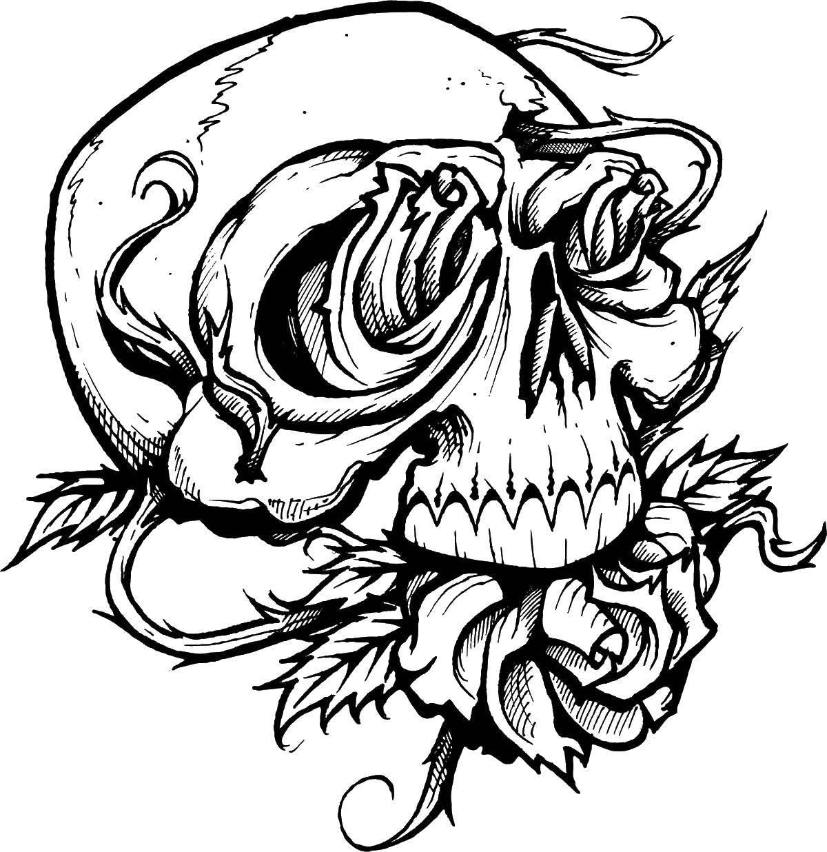 Раскраска череп Скачать ,испанский язык, испанец,.  Распечатать