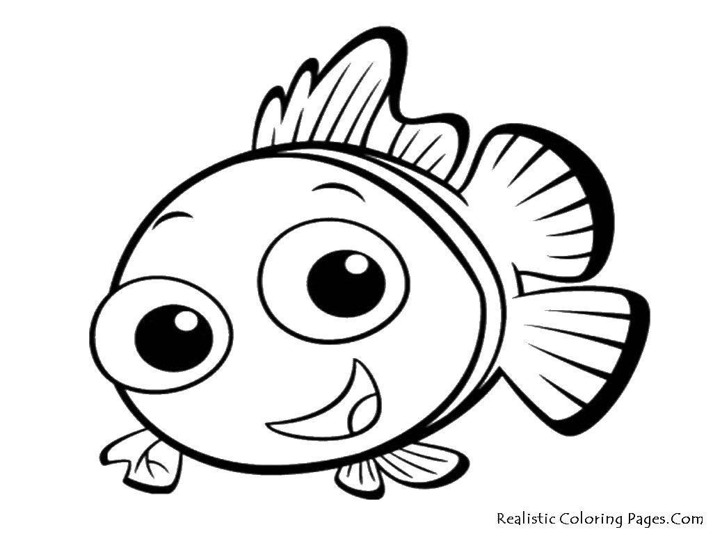 Раскраска рыбы Скачать игрушка, глаза, магазин.  Распечатать ,мой маленький зоомаганиз,