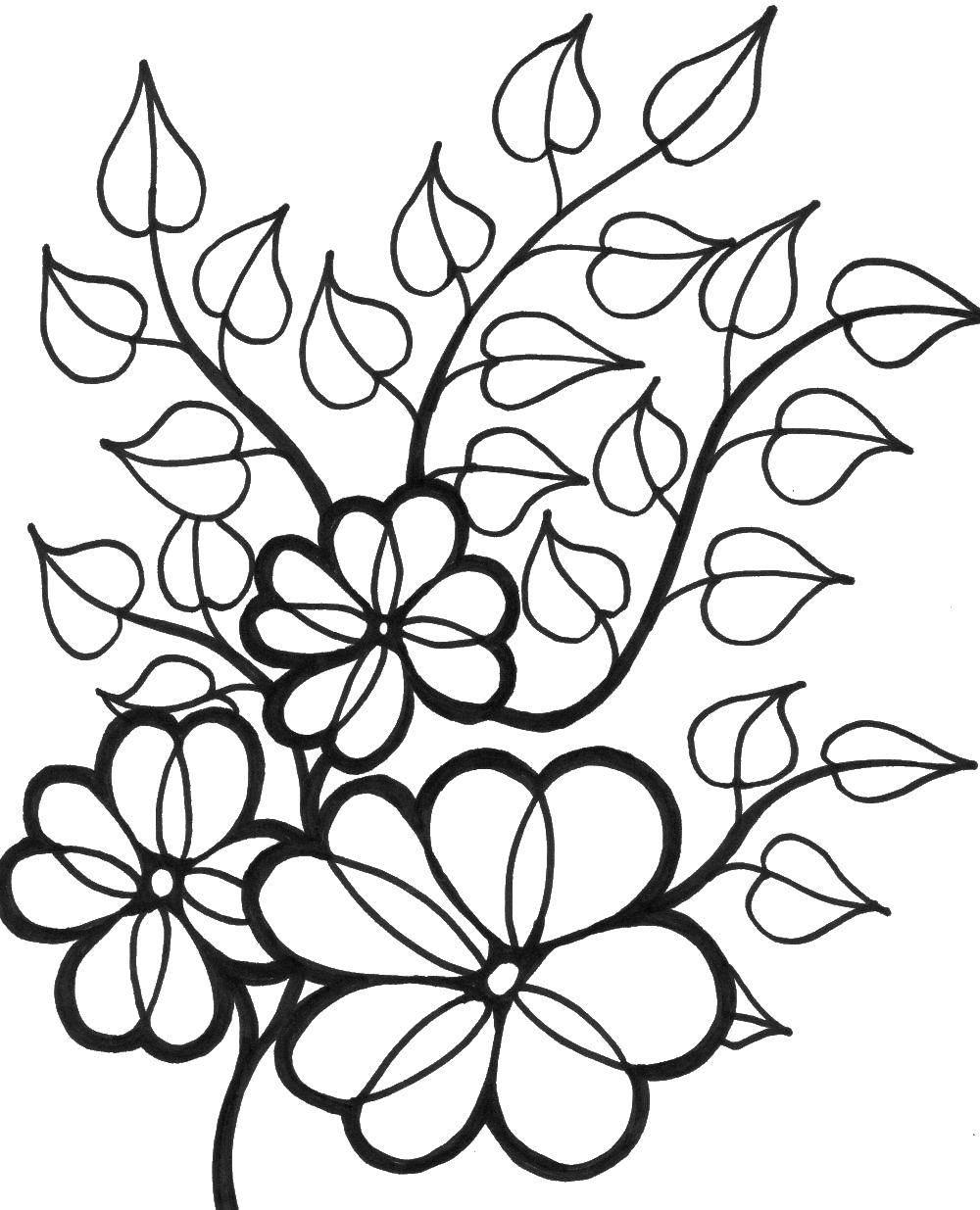 Раскраска цветы Скачать микки, цветы, сердечки.  Распечатать ,День святого валентина,