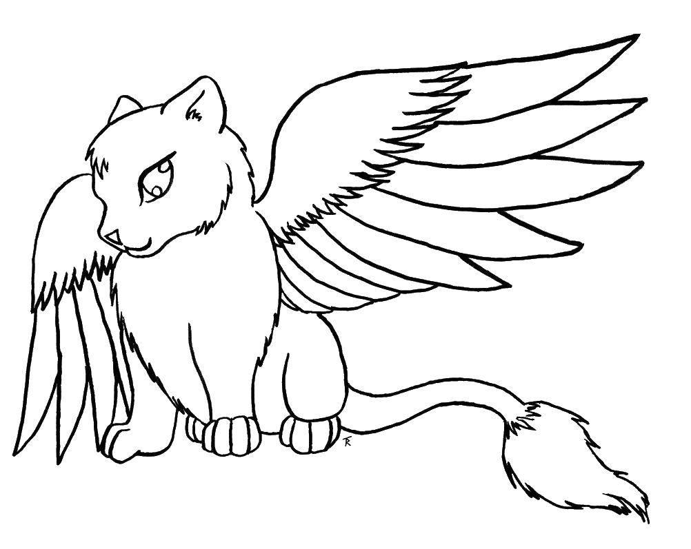 Раскраска Кошка с крыльями Скачать ,животные, крылатая кошка,.  Распечатать