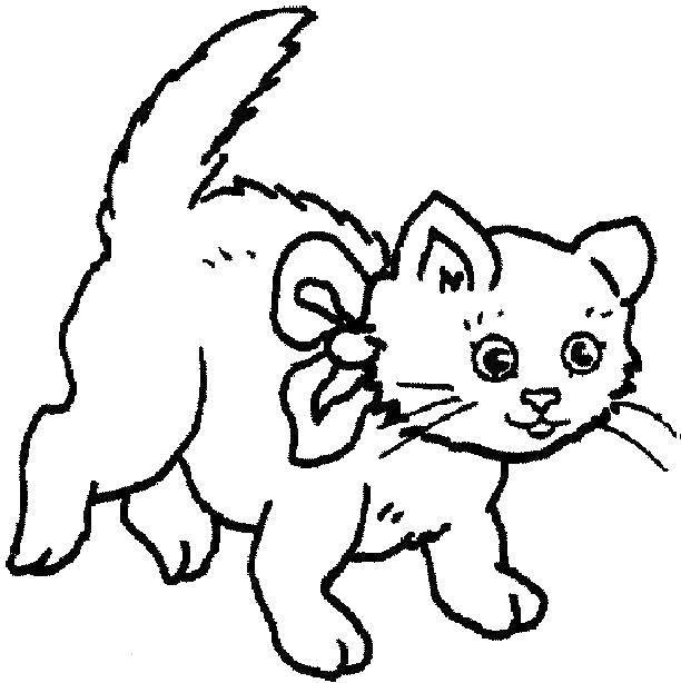 Раскраска Коты и котята Скачать .  Распечатать