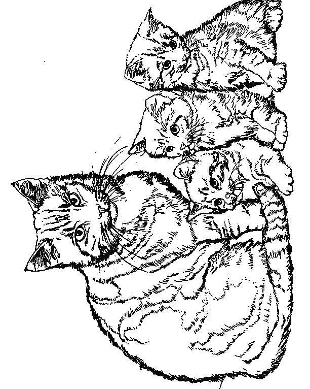 Раскраска Коты и котята Скачать ,рождество, гринч,.  Распечатать
