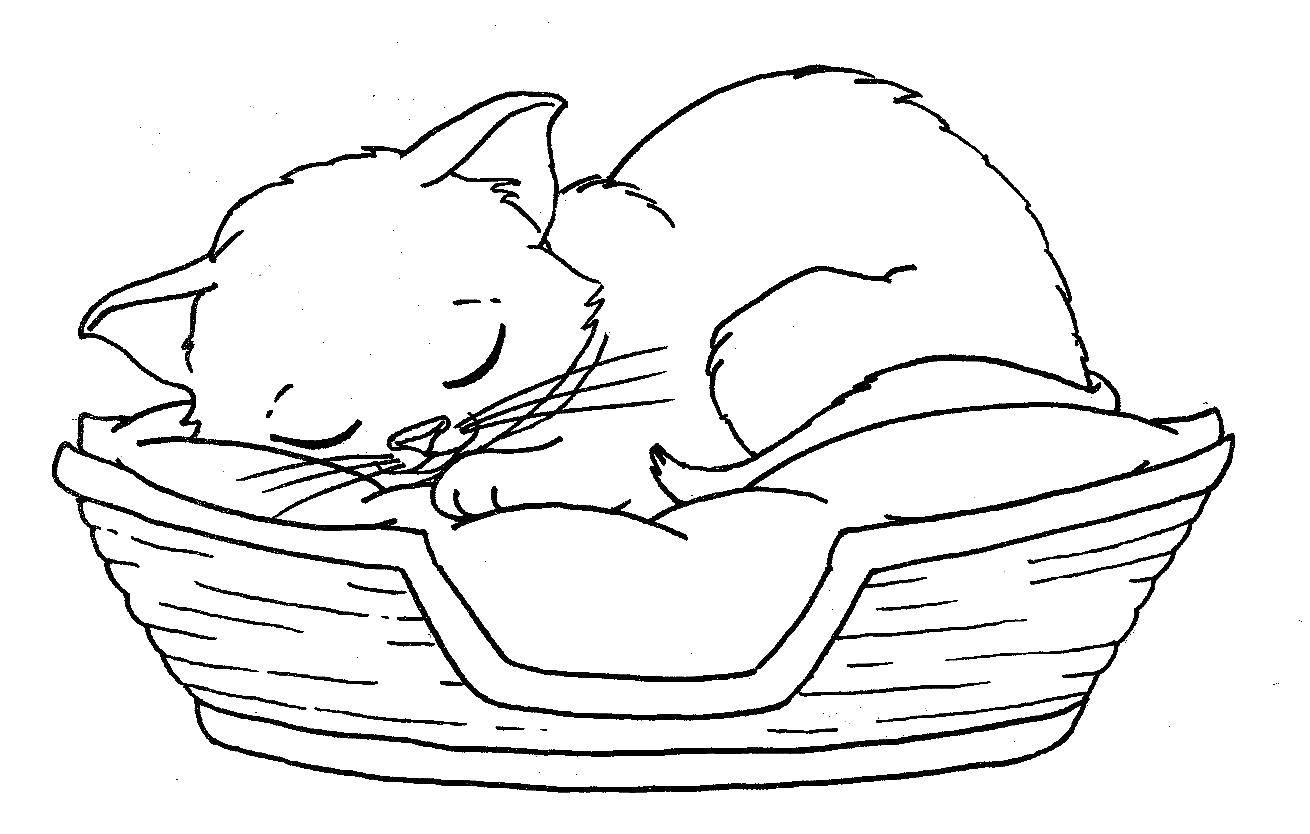 Раскраска Кошка спит в корзинке Скачать животные, котенок, кошка.  Распечатать ,Коты и котята,
