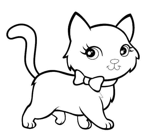 Раскраска Котенок с бантиком Скачать животные, котенок, кошка, бантик.  Распечатать ,Коты и котята,