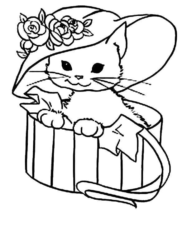 Раскраска Котенок в шляпе Скачать животные, котенок, кошка.  Распечатать ,Коты и котята,