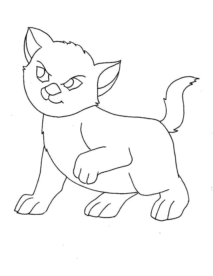 Раскраски милашка, Раскраска Милашка щеночек собаки щенки.