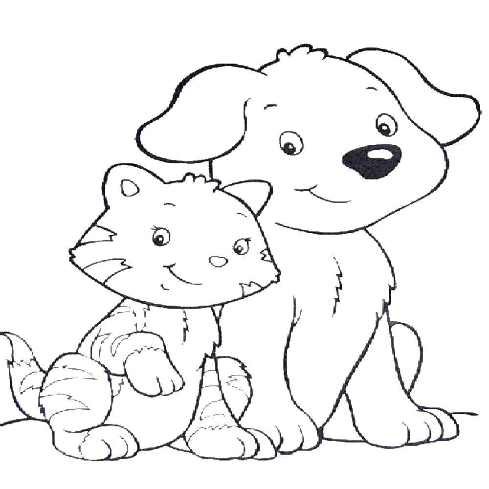 раскраски котёнок раскраска котенок и щенок животные