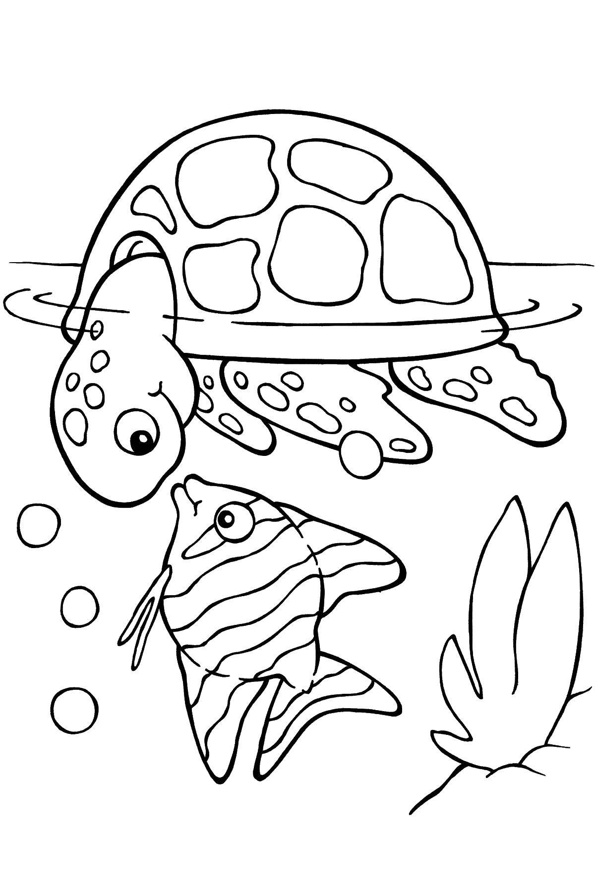 Раскраски морская, Страница:6.