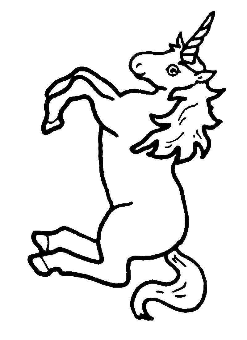 Раскраска Животные Скачать принцессы, мультфильмы, сказки, Белоснежка.  Распечатать ,белоснежка,