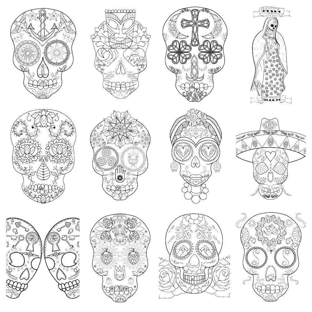 Раскраска череп Скачать животные, змея, ужик, уж.  Распечатать ,Животные,