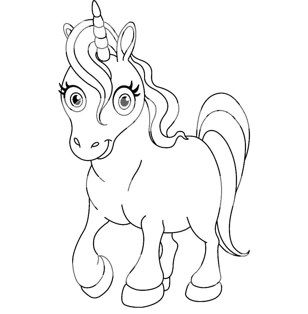 Раскраска Единорог Скачать единорог, пони.  Распечатать ,Волшебные создания,