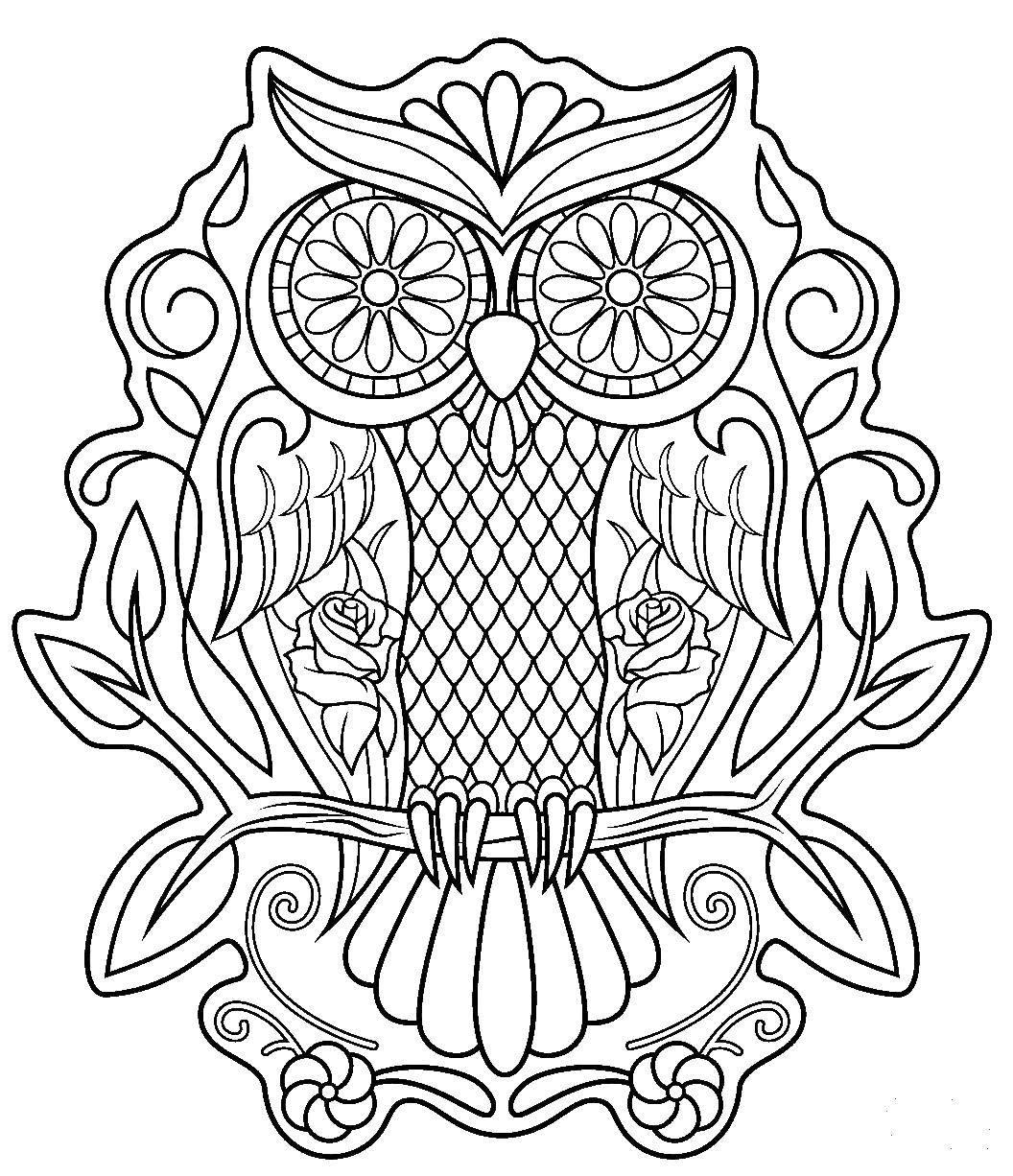 Раскраска Красивая сова Скачать Узоры, животные.  Распечатать ,узоры,