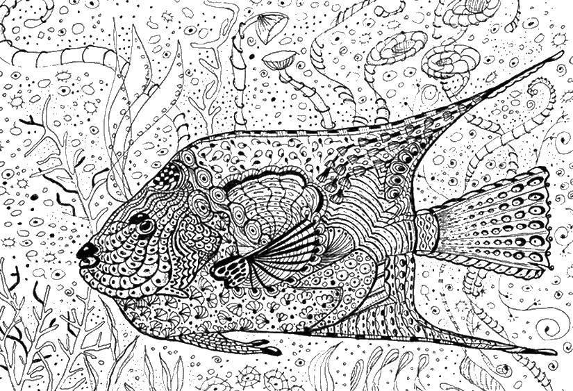 Раскраска Узорный подводный мир Скачать Подводный мир, рыба.  Распечатать ,Антистресс,