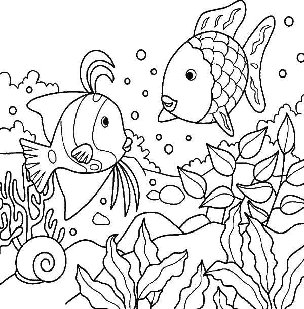 Раскраска рыбы Скачать парк развлечений, парки, билеты.  Распечатать ,раскраски,
