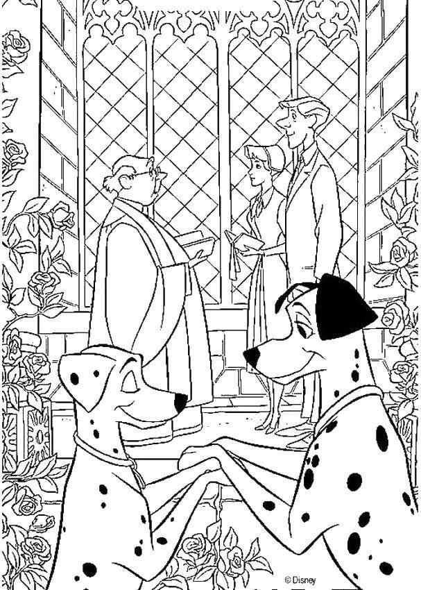 Раскраска Свадьба далматинцев Скачать 101, далматинец, свадьба.  Распечатать ,Свадьба,