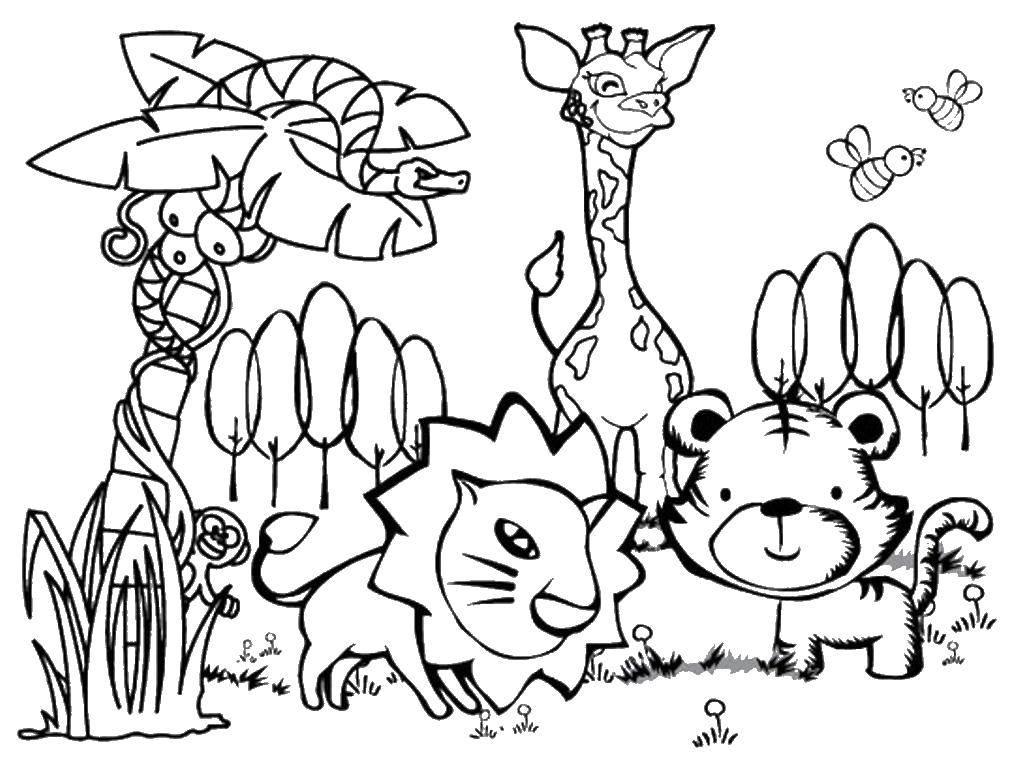 Раскраска Животные Скачать найди буквы, буквы, С.  Распечатать ,раскраски найди букву,