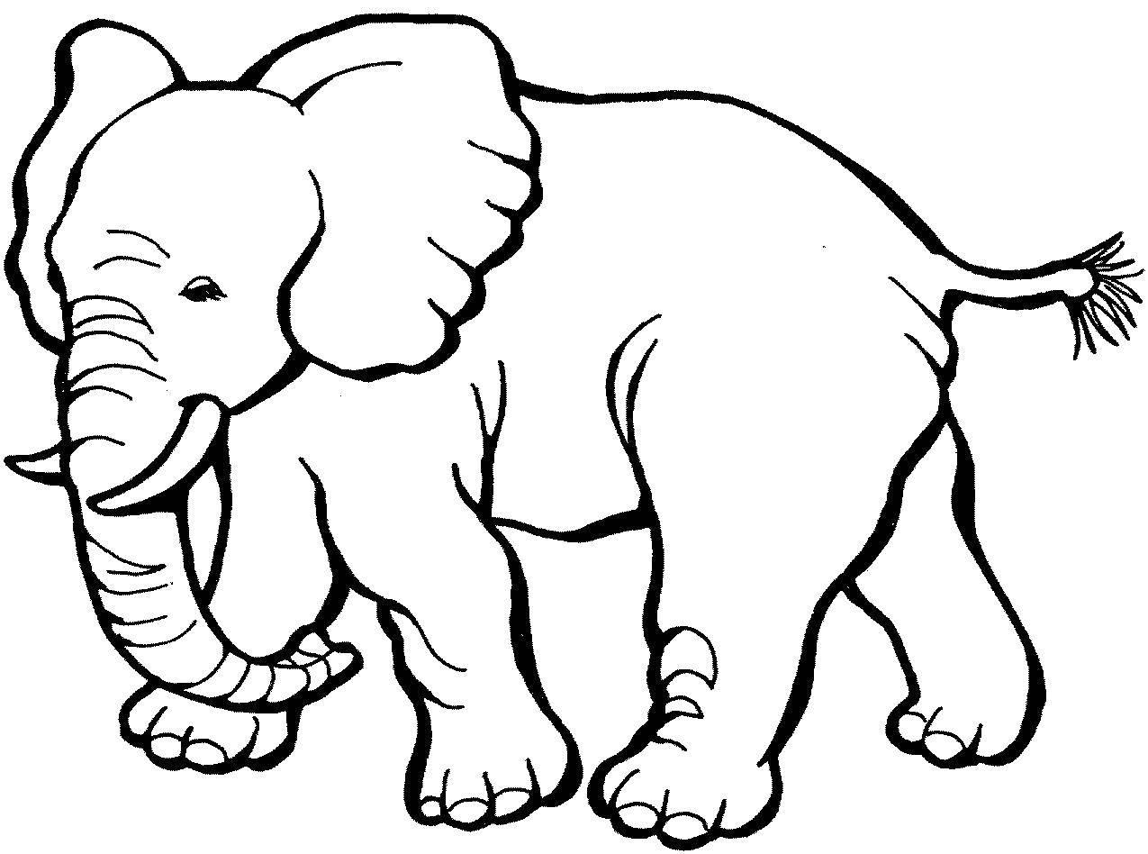 Раскраска Неуклюжий слоник Скачать Животные, слон.  Распечатать ,животные,