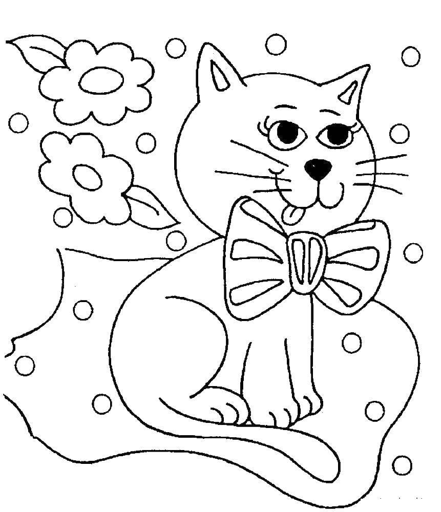 Раскраска Кошка Скачать единорог, крылья, корона.  Распечатать ,мой маленький пони,