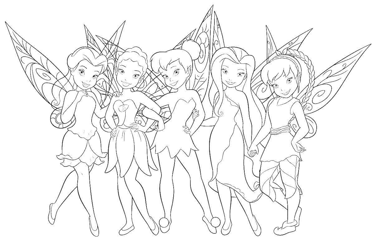 Раскраска Фея динь динь и ее подруги феи Скачать фея, динь динь, видия.  Распечатать ,фея,