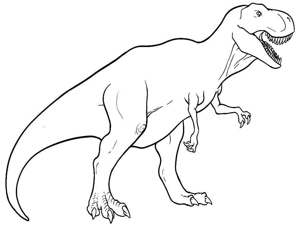 Раскраска Тираннозавр рекс Скачать ,Рекс,.  Распечатать