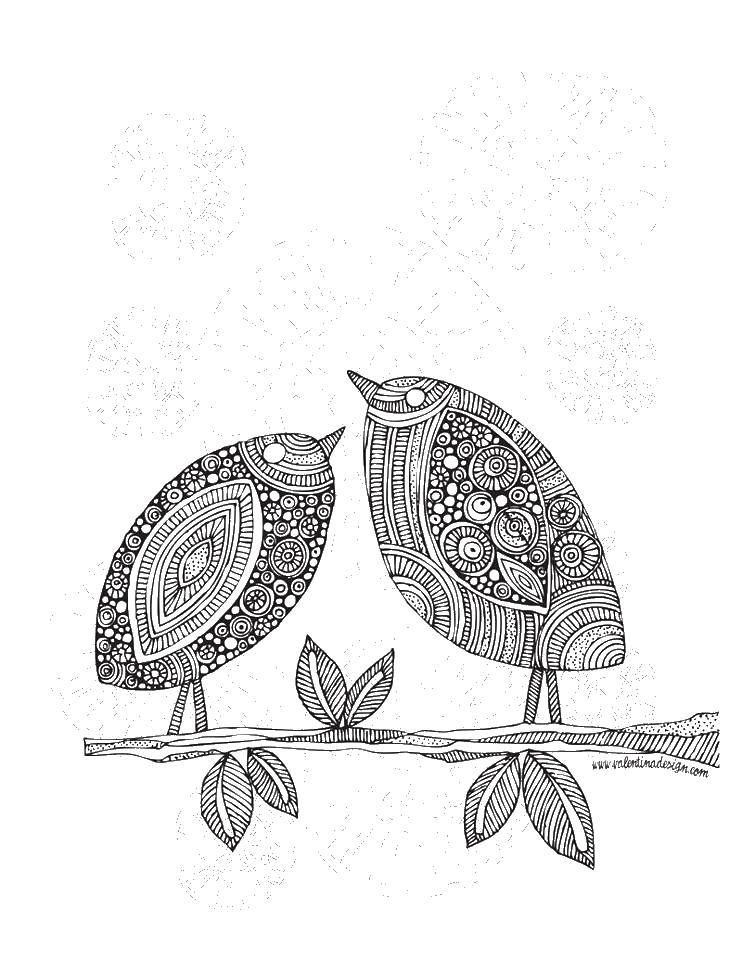 Раскраска Птицы на ветке Скачать птицы, раскраски антистресс.  Распечатать ,раскраски антистресс,