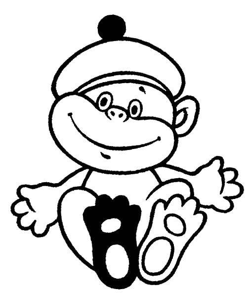 Раскраска зверушки Скачать Мишка Тедди.  Распечатать ,мишки тедди,