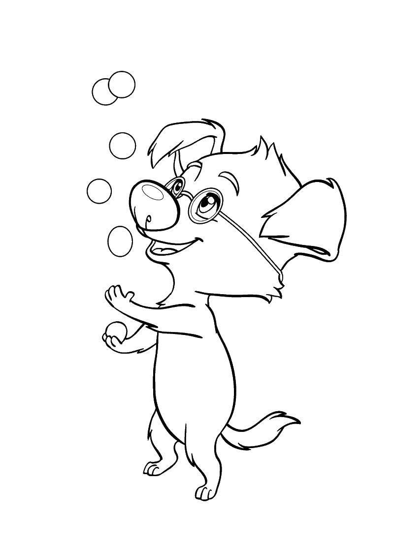 Раскраска Рекс жанглирует шарами Скачать рекс.  Распечатать ,белка и стрелка,