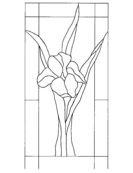 Раскраска узоры орнамент трафареты цветы Скачать шопкинс, молоко.  Распечатать ,раскраски,