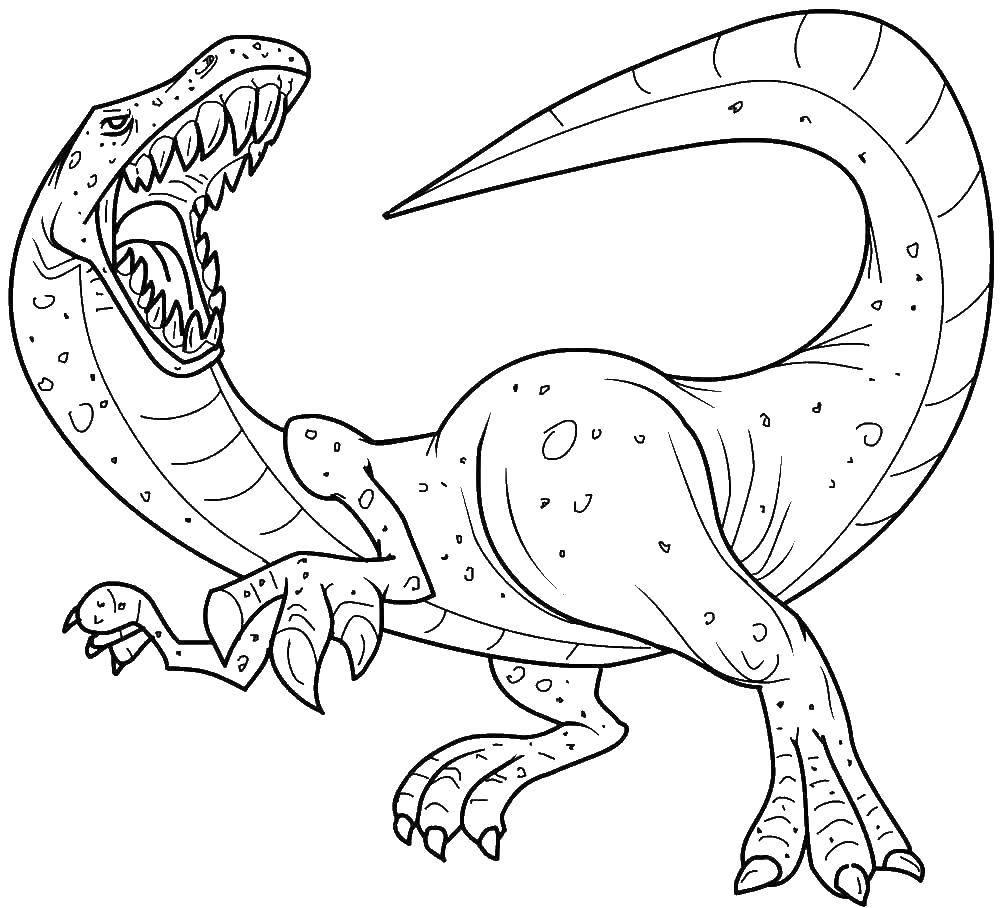 Раскраска Злой динозавр Скачать ,динозавр,.  Распечатать
