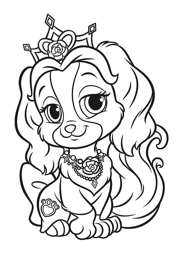 Раскраска Питомцы дисней принцесс тикап Скачать Питомцы, Дисней, Принцесс, Тикап.  Распечатать ,Питомцы Дисней,
