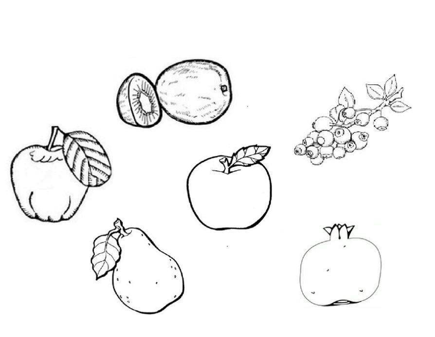 Раскраска Фрукты и ягоды Скачать фрукты, ягоды.  Распечатать ,фрукты,