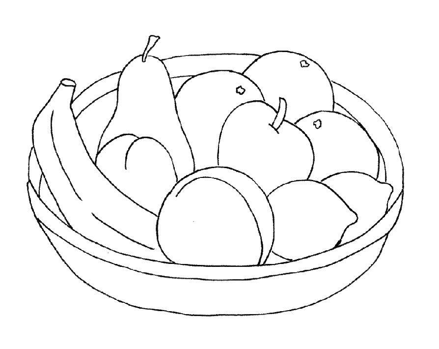 Раскраска фрукты Скачать ,Рептилия, черепаха,.  Распечатать