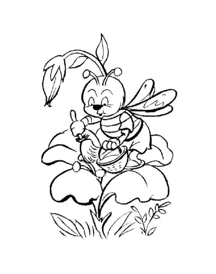 Раскраска пчела Скачать остров, пираты, корабль.  Распечатать ,остров сокровищ,
