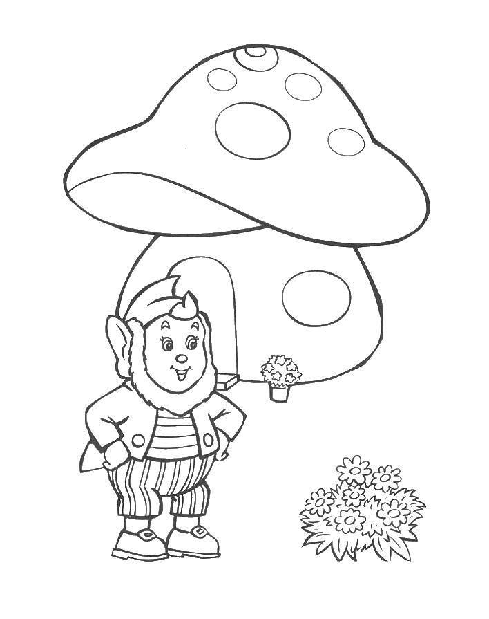 Раскраска Гном под грибом Скачать гном, гриб.  Распечатать ,грибы,