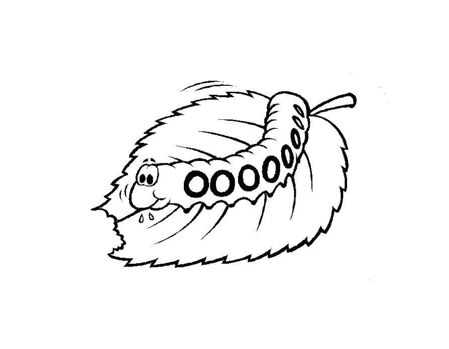 Раскраска гусеница Скачать ,гринч,.  Распечатать