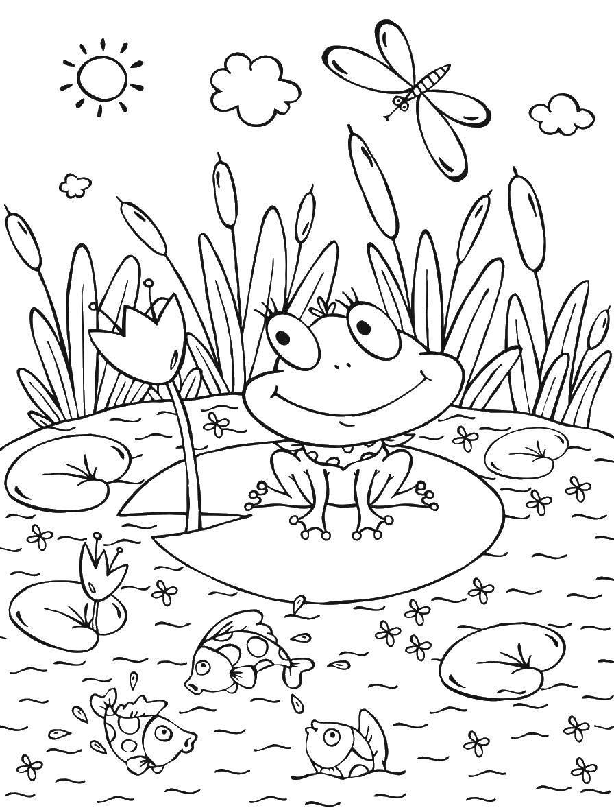 Раскраска лягушка Скачать ,скакалка, девочки,.  Распечатать