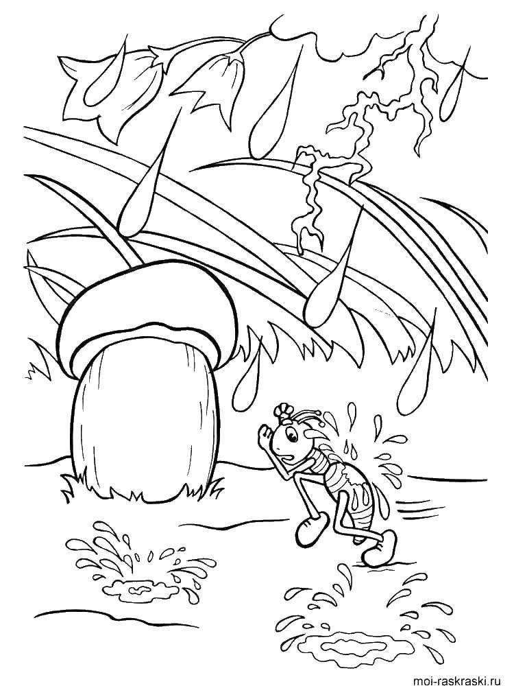 Раскраска Насекомые Скачать ,Персонаж из мультфильма, Маша и Медведь,.  Распечатать