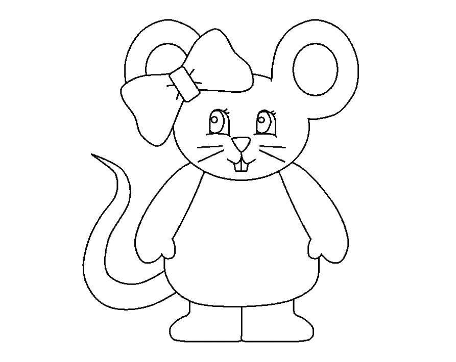 Раскраска мышка Скачать фрукт, ягоды, лето.  Распечатать ,еда,