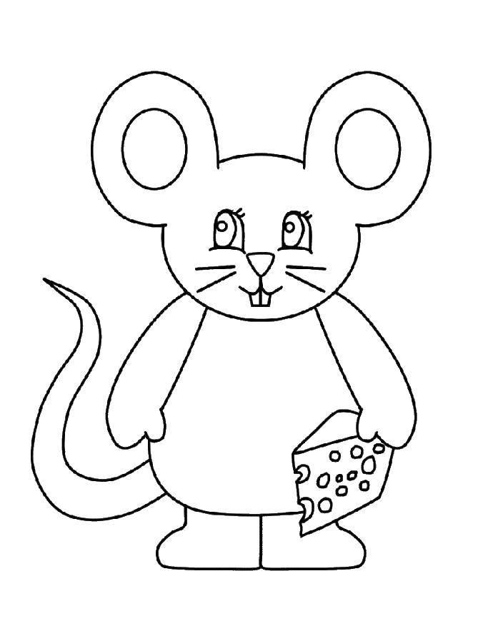 Раскраска мышка Скачать контур, ромашка.  Распечатать ,Контуры цветка для вырезания,
