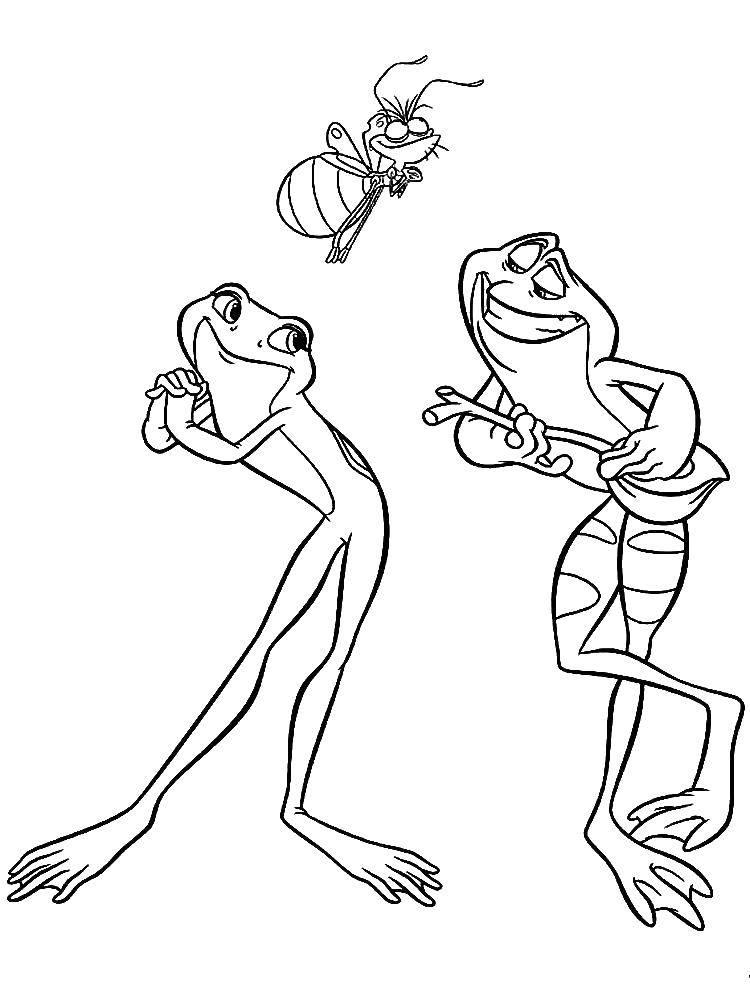 Раскраска лягушка Скачать .  Распечатать