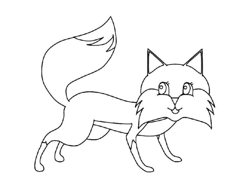 Раскраска лисичка Скачать ,медведь, мишки,.  Распечатать