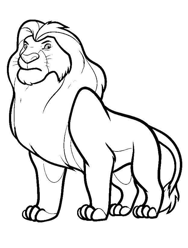 Раскраска Король лев Скачать ,король лев, Симба,.  Распечатать