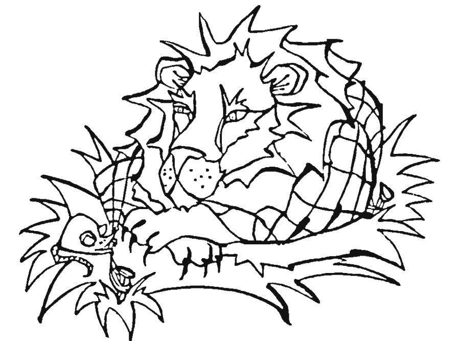 Раскраска лев Скачать Олимпиада.  Распечатать ,олимпийские игры,