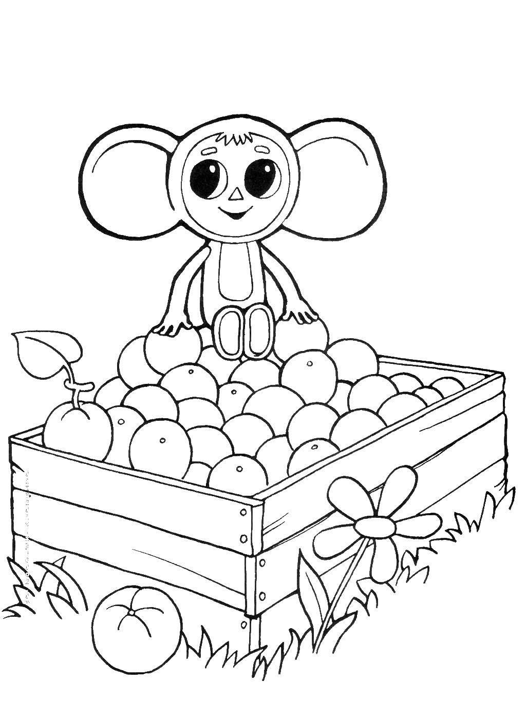 Раскраска Чебурашка в коробке с апельчинами Скачать чебурашка, Гена.  Распечатать ,чебурашка,